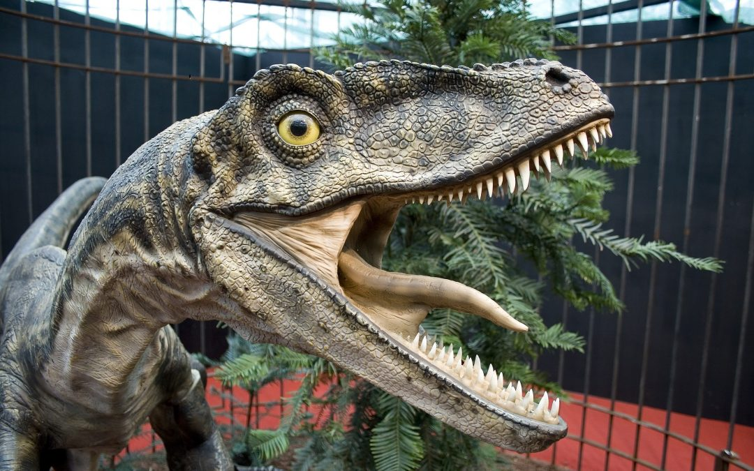 velociraptor baby
